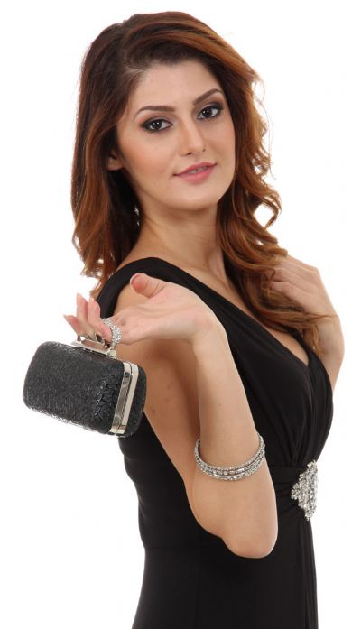 Metal Frame Elegant Evening Bag in Black